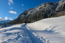 le chemin d'accès en hiver du Mazot de l'Ours