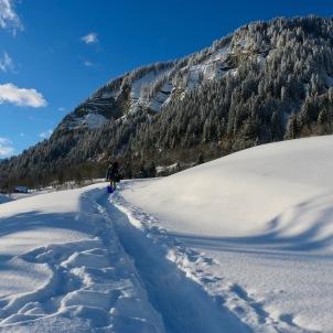 L'été accès en 4x4 L'hiver, 200m à marcher : des raquettes sont fournis