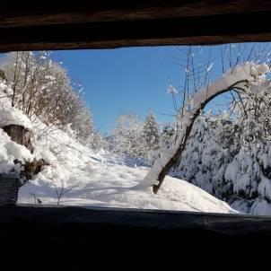 vue de la douche en hiver